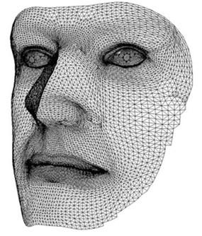 Сформированное программой эталонное 3D изображение