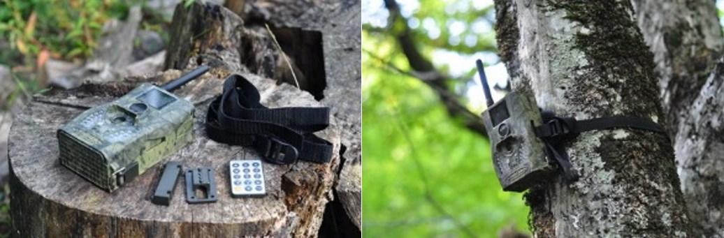 Фотоловушка MMS 3G модель Scoutguard SG550M