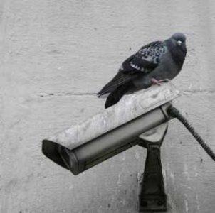 Необходимо осуществлять систематическую очистку камер видеонаблюдения, особенно установленных на улице